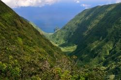Waikolu Valley from the overlook on Maunahui Road; Maunahui Forest Reserve, Molokai, Hawaii.